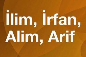 ilim irfan 300x200 - Müderris Ali Feyzi Efendi