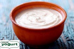 probiyotik yogurt 300x200 - Evde Probiyotik Yoğurt Yapımı