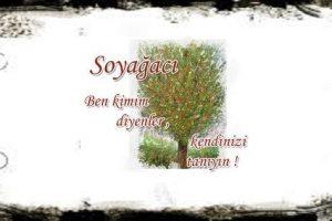 sivrihisar soyagaci 300x200 - Sivrihisar Soy ve Boylar